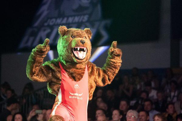 Grizzly-Maskottchen